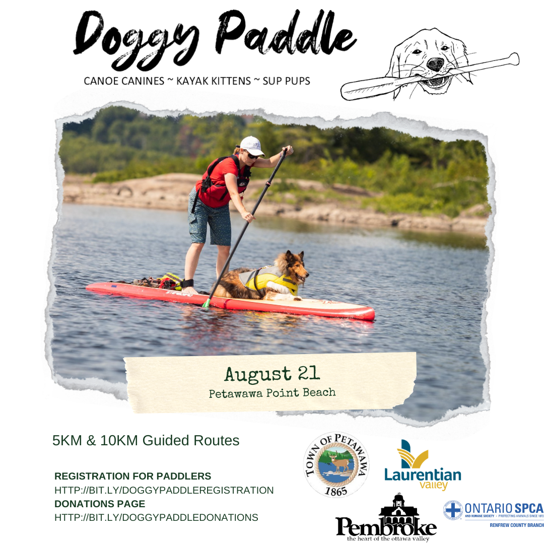 Graphic announcing the new Doggy Paddle event details.